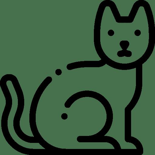 Inicio, Mascota Express